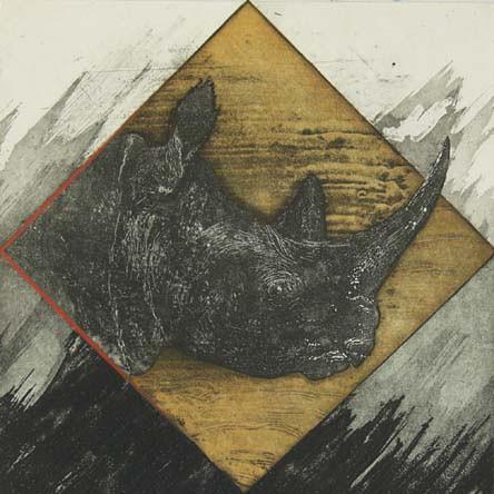 Rhinocéros VIII